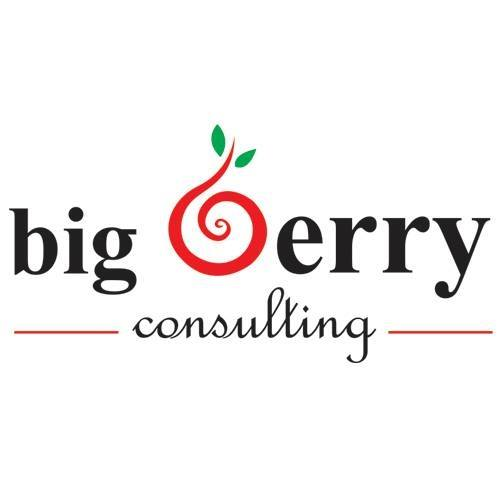 Big Berry Consulting Sdn Bhd Logo